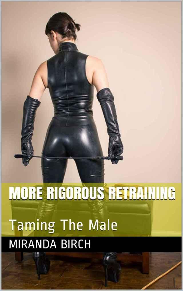 more_rigorous_retraining