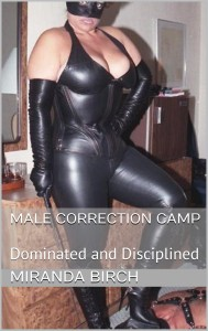 Cover of Male Correction Camp